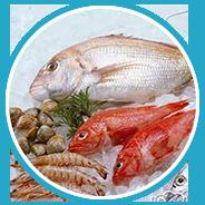 用于鱼虾类